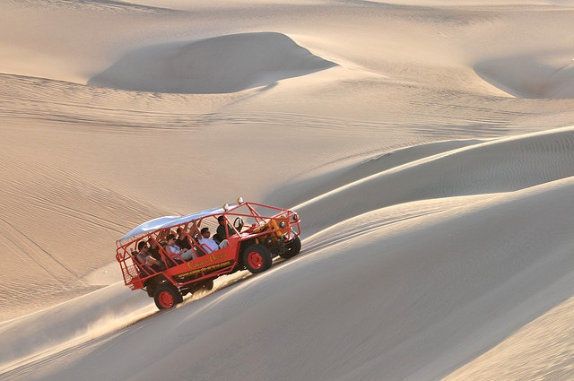 Full Day Paracas and Ica Tour